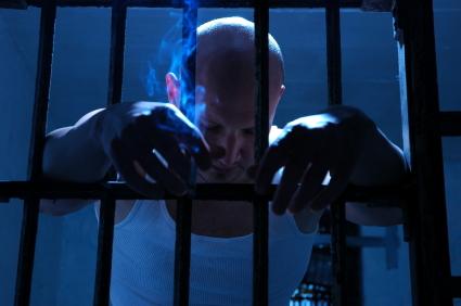 In Custody Inmate Search
